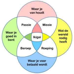 Ikigai - toekomt.nl