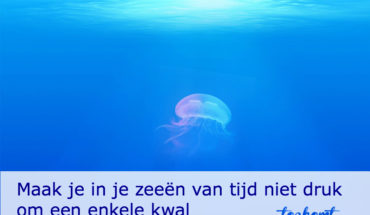 kwal - toekomt.nl